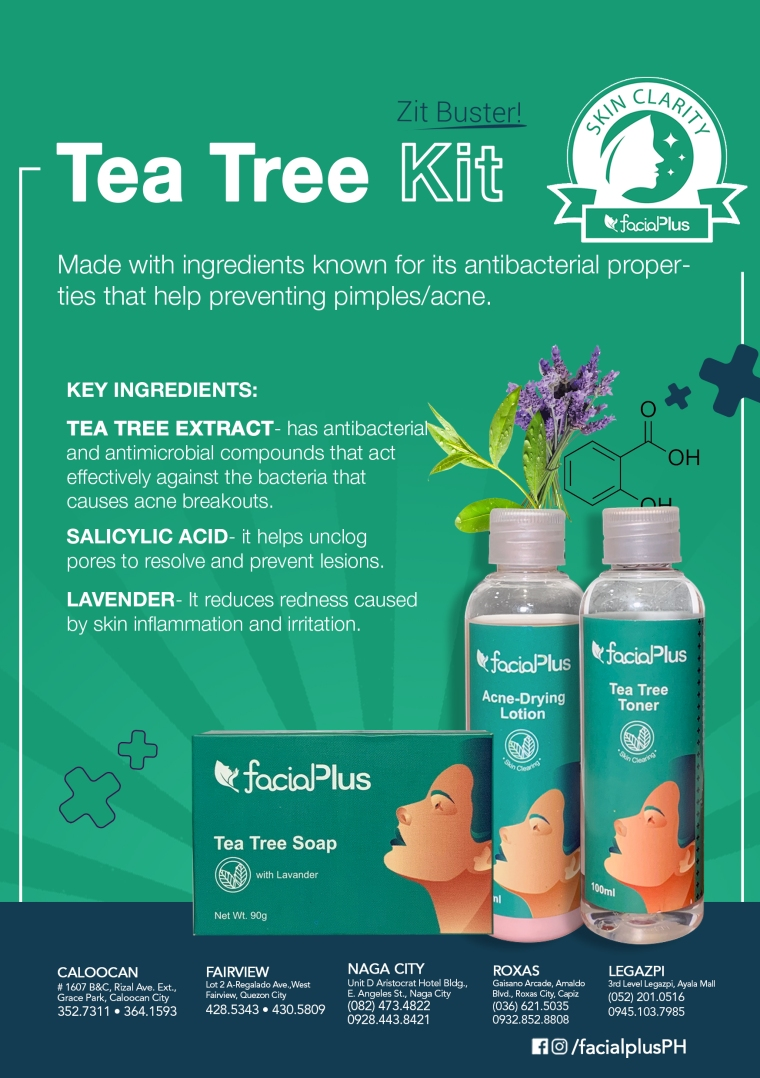 Tea Tree_Flyer_A5